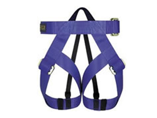Vertical Gym Harness